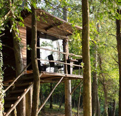 Costruire casetta in legno su albero